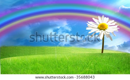 green fields with a daisy in it - stock photo