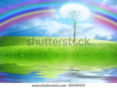 green fields with a dandelion in it - stock photo