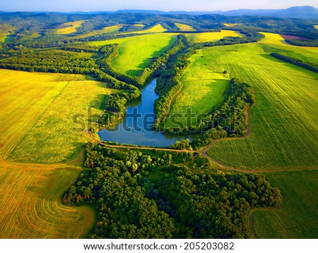 Green fields with pond aerial view before harvest at summer - stock photo