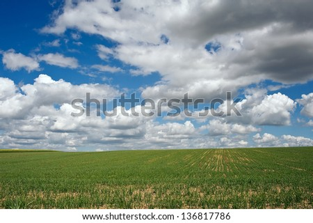 Green fields with sky and clouds - stock photo
