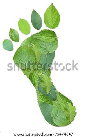 Green footprint made by real leaves isolated on white - stock photo