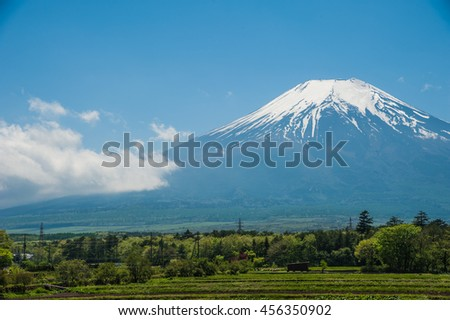 Green forest with background of  beautiful mountain Fuji in winter at Japan, natural landscape. - stock photo