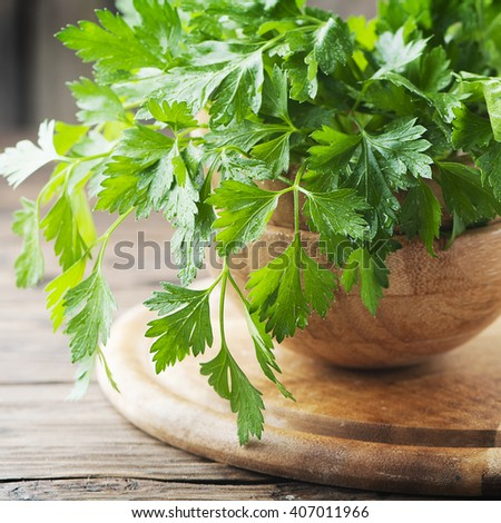 Green fresh parsley on the wooden table, selective focus and square image - stock photo
