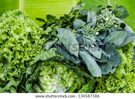 green fresh vegetable on green banana leaf ready for cooking