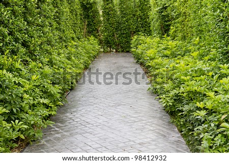 green garden and path - stock photo