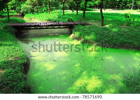 green garden and wooden bridge - stock photo