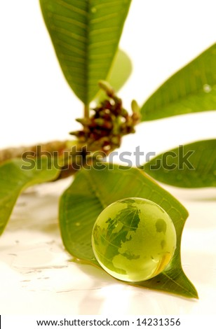 green globe on leaf. - stock photo