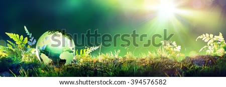 Green Globe On Moss - Environmental Concept  - stock photo