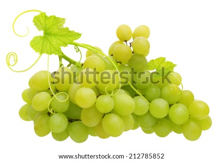 Green grape isolated on white background. - stock photo