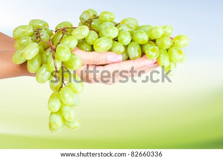 Green grapes in her hand. - stock photo