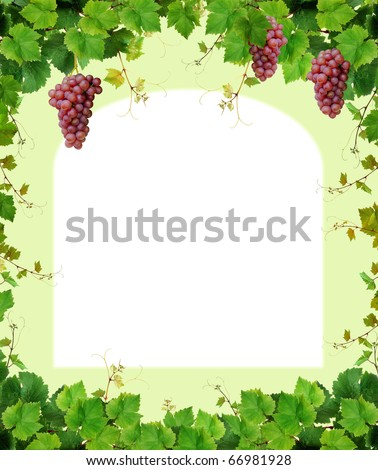 Green grapevine frame with pink grapes - stock photo