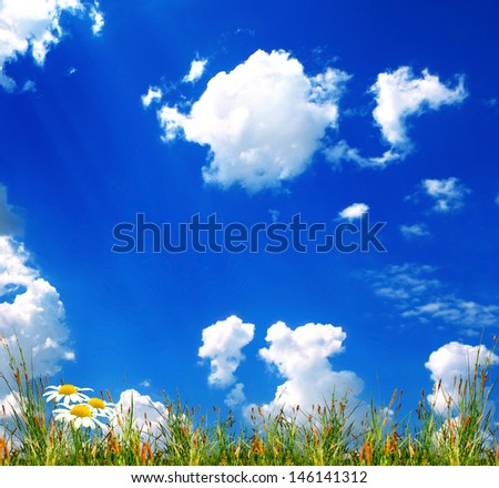 green gras on the sky background - stock photo