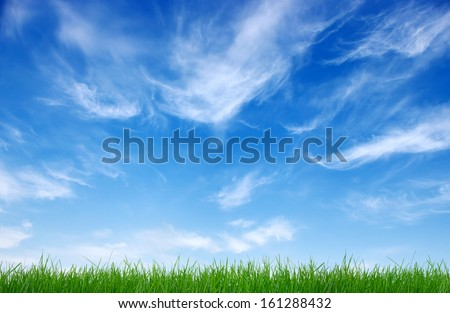 Green grass against the cloud - stock photo