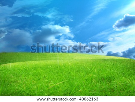 green grass and a blue sky with clouds