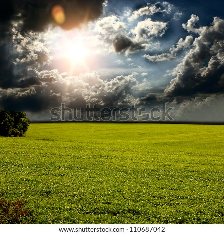 Green grass, and beautiful cloud on the sun set