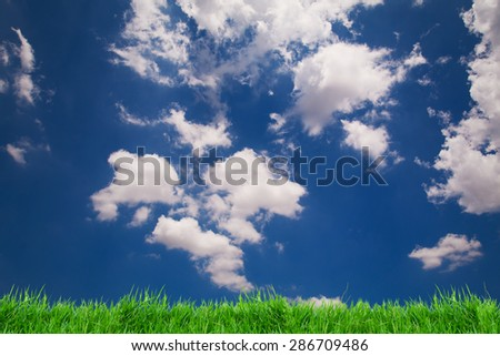 green grass and blue sky background - stock photo
