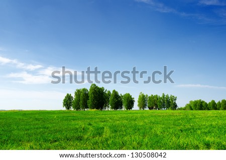 Green grass and blue sky. Summer landscape. - stock photo