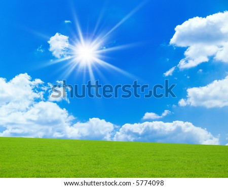 Green grass and bright sky