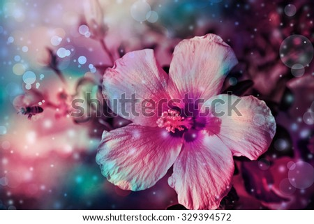 Green grass and pink flowers in the nature, meadow of flowers, spring floral landscape - stock photo