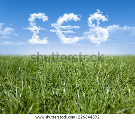 Green grass and Pound, Euro, Dollar currency shaped clouds - stock photo