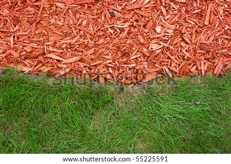 Green grass and red mulch background - stock photo