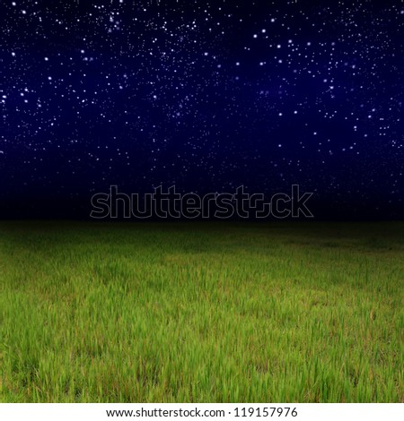 Green grass and Star night - stock photo