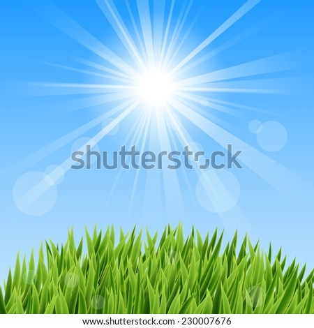 Green Grass And Sun Beam  - stock photo