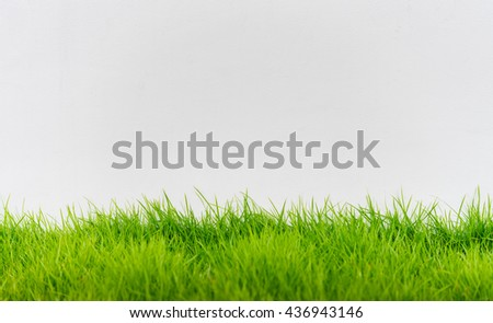 Green grass and white wall, abstract texture background. - stock photo