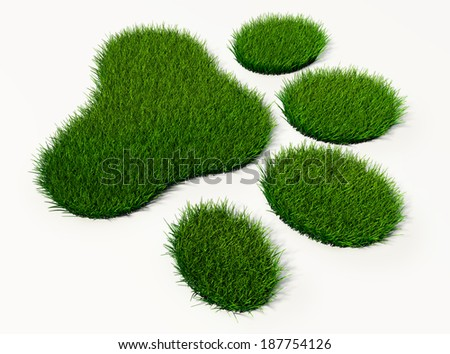 green grass animal footprint on white background - stock photo