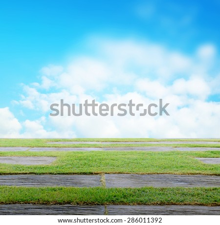 Green grass as foreground with blue cloudy sky background