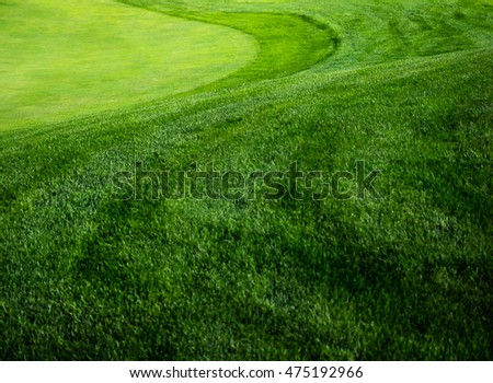 Green grass background on a golf course with break. Types of mowing the grass on lawn of golf field -  green, collar and fairway.