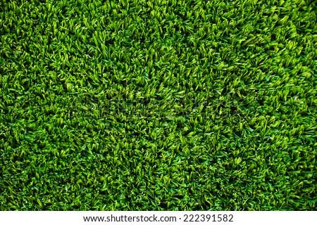 Green Grass Background Texture - stock photo