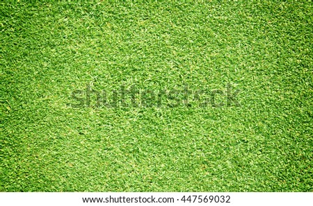 Green grass background turf grass surface