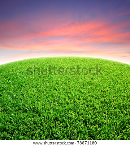 Green grass beautiful sky twilight red background for design - stock photo