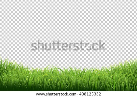 Green Grass Border, Isolated on Transparent Background - stock photo