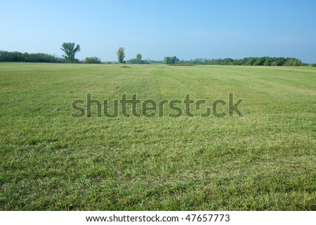 Green grass field and clear blue sky - stock photo