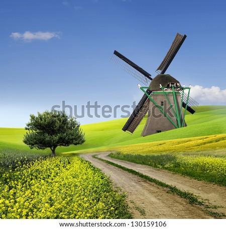 Green Grass Field Landscape - stock photo