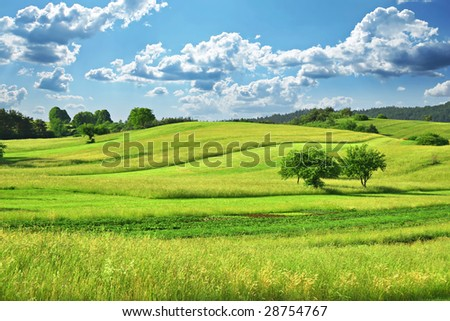 Green Grass Field  Landscape with fantastic clouds in the background - stock photo