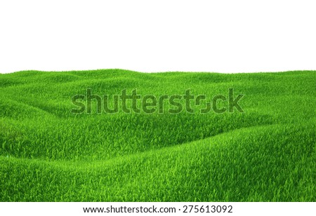 Green grass growing on hills with white background top view. 3d render - stock photo