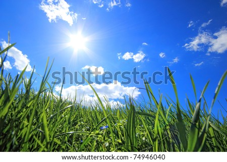 Green grass hills under midday sun in blue sky. - stock photo