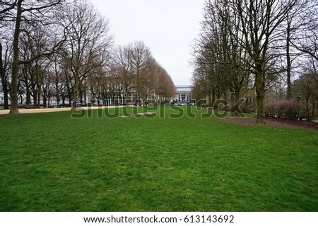 Green grass in a spring park