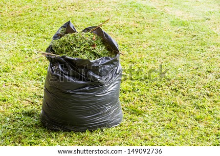 Green grass in black color garbage bag on lawn - stock photo