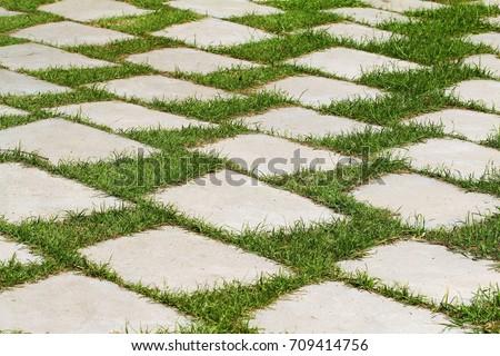 Stone Path On Green Grass Stock Photo 125052653 Shutterstock