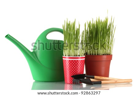 Green grass in two flowerpot isolated on white - stock photo