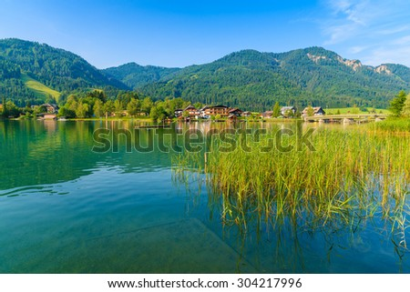 Green grass in water on shore of Weissensee alpine lake in summer landscape, Austria - stock photo