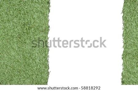 Green Grass Isolated for Web page