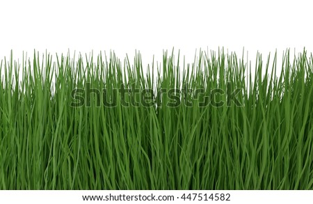 Green grass isolated on white 3d illustration - stock photo