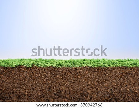 Green grass lawn section with dirt - stock photo