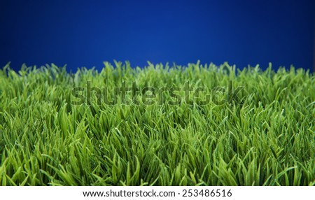 Green grass lawn with sunny and rainy days - stock photo