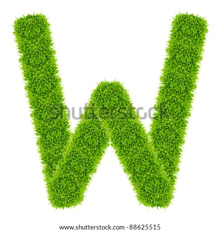 green grass letter W Isolated - stock photo